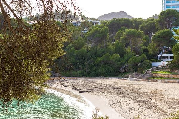 Font de sa Cala - Mallorca Nordosten